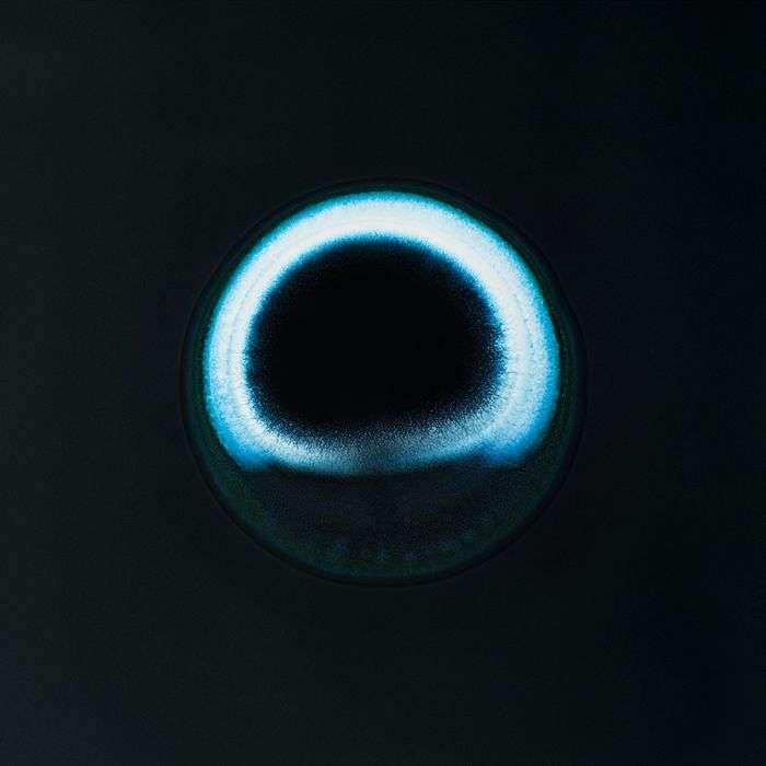 Наркотичні засоби під мікроскопом (14 фото)