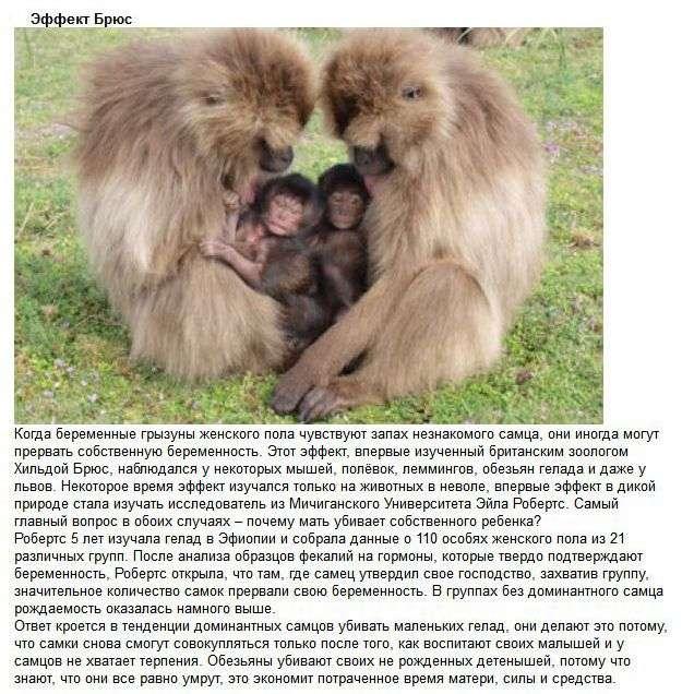 Методи впливу суспільства на людину (10 фото)