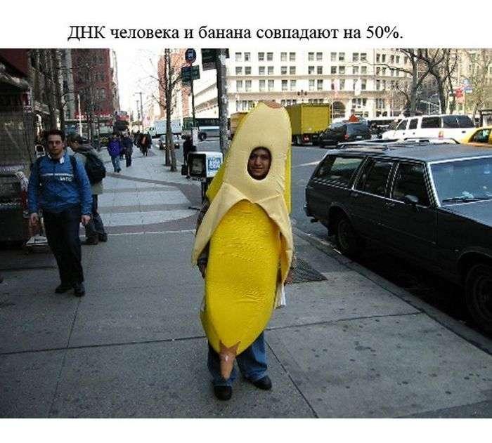 Пізнавальні і забавні факти (24 фото)