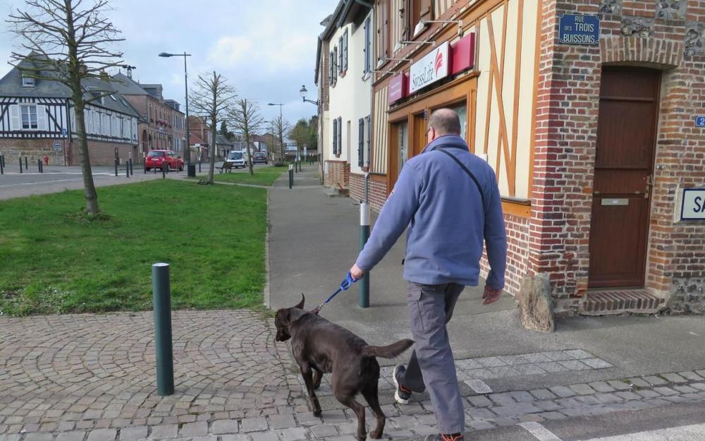 Во французском городке штрафуют за лай собак удивительное