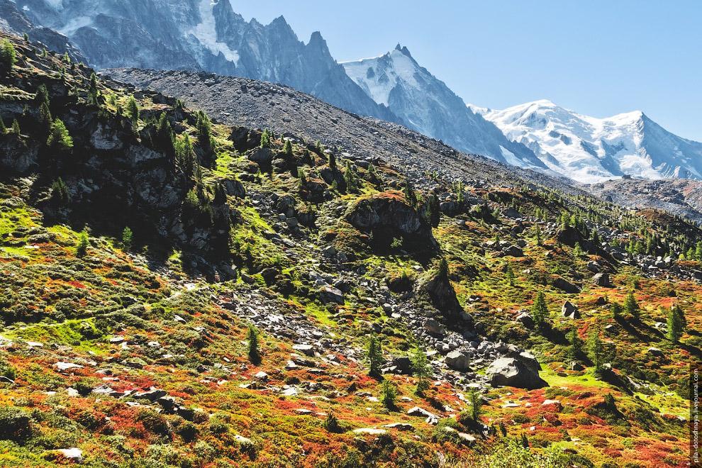 Времена года с 2-километровой высоты природа