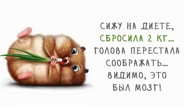 Отец, рассказывавший сказку сыну, так сильно хотел спать, что колобка ещё до встречи с зайцем сбила фура анекдоты
