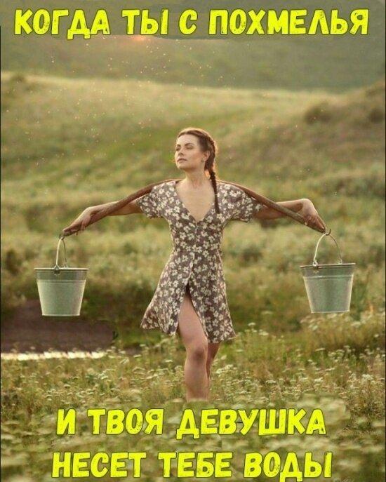 Попугайчик Анатолия Вассермана задавил своим интеллектом двух ветеринаров. анекдоты