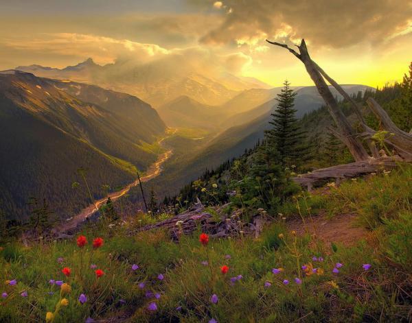 Кевин Макнийл. Сказочные пейзажи природа