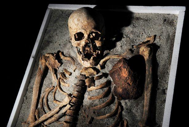 «Сгинь, нечисть!»: наборы для убийства вампиров снова актуальны доказательства