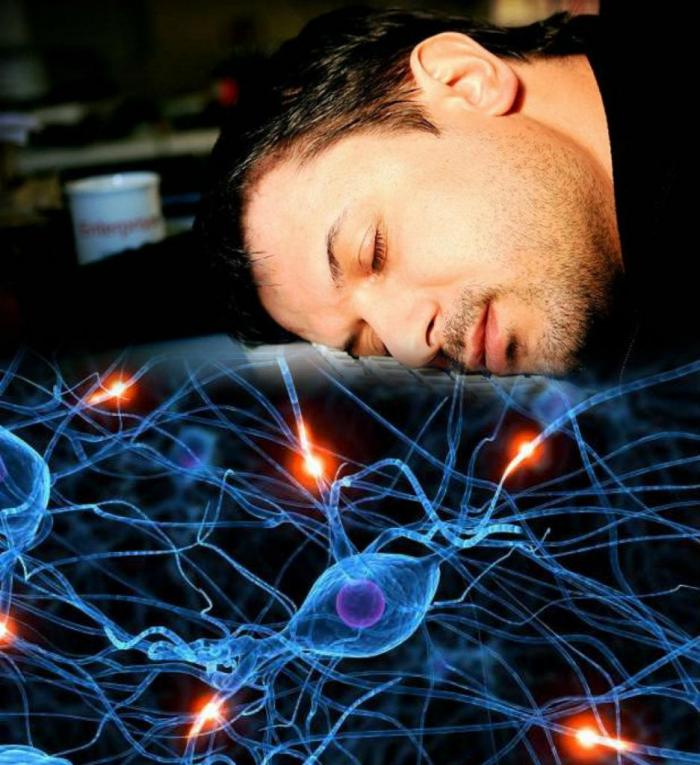 Отключаем мозг! Доказано, что периодическое безделье делает нас продуктивнее во всех сферах жизни жизненное