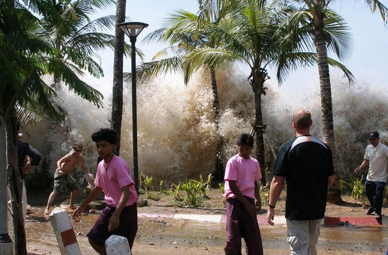 Тайфун, ураган и цунами — чем они отличаются? природа