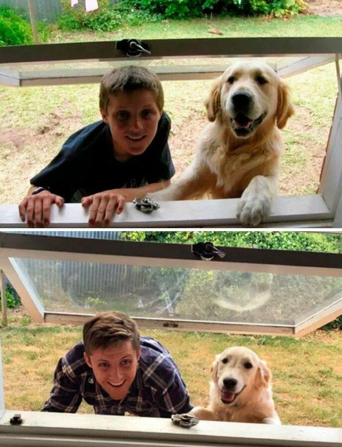 50 собак, которые повзрослели вместе со своими хозяевами жизненное